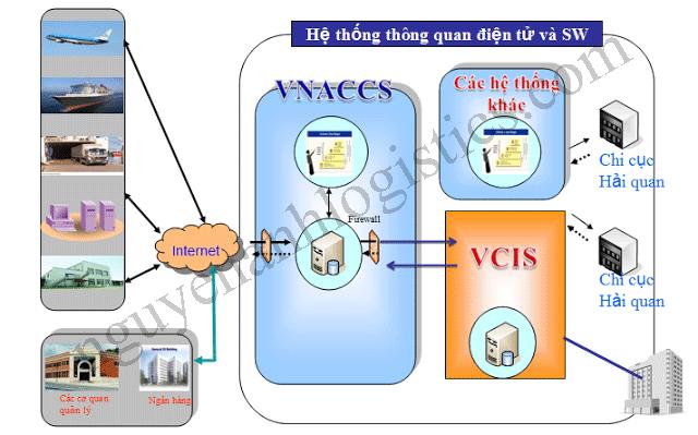 VNACCS/ VCIS