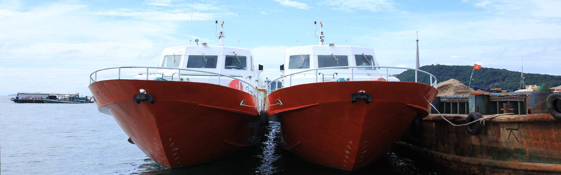 tàu Đông Mai