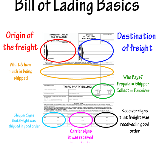 cung cấp bill cho shipper trước ngày tàu chạy
