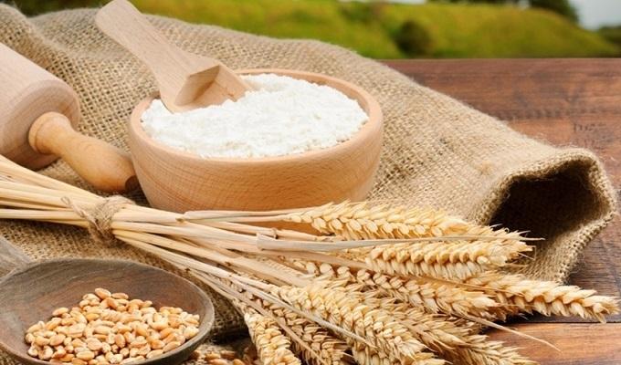 Nhập khẩu hàng Gluten lúa mì