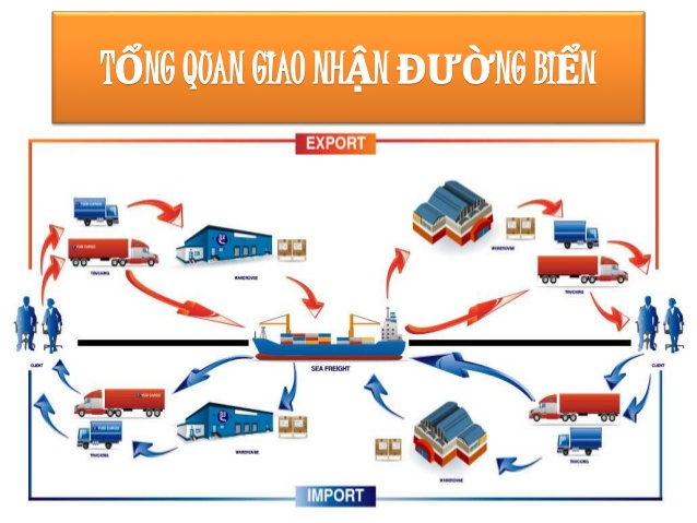 quy trình làm hàng nhập đường biển