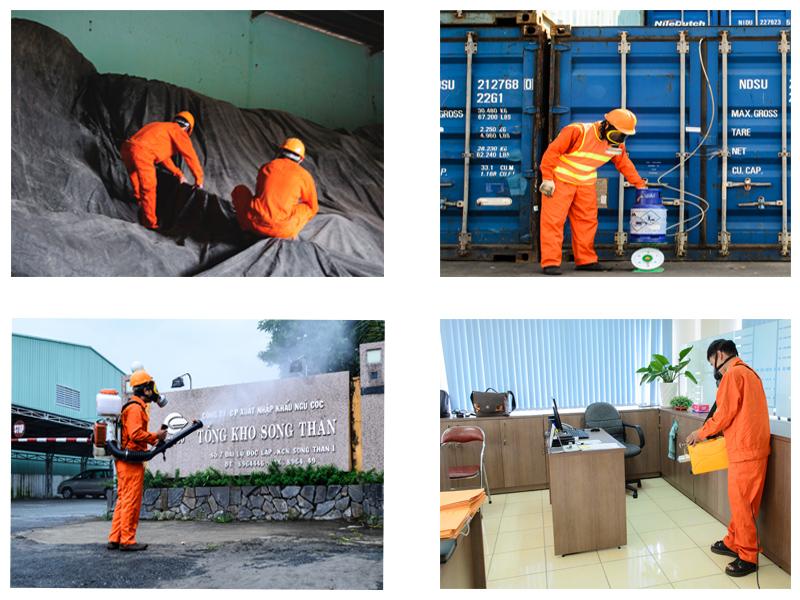 Hun trùng hàng hóa xuất khẩu