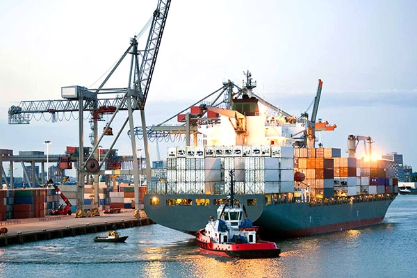 hãng tàu container